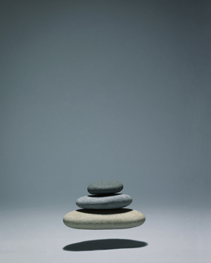 Nikon Zen